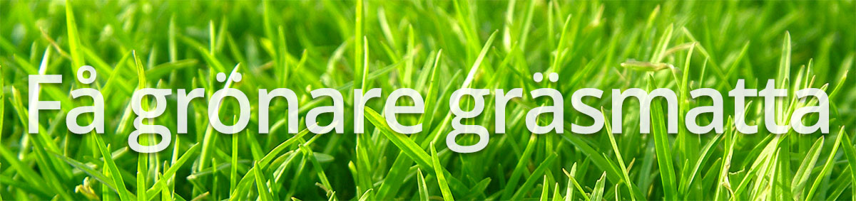 Grönare gräsmatta med bra gräsklippare