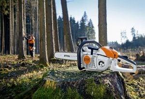 Motorsåg - fälla träd