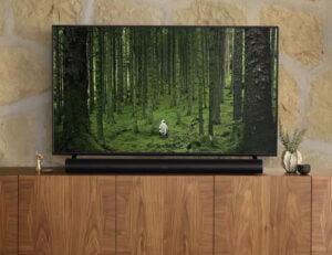 Sonos Arc Smart 5.0 Soundbar - under TV